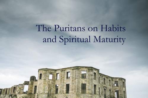 "were the puritans puritanical thesis Have you heard the term ""puritanical"" used to refer to buttoned-up attitudes about sex a persistent myth about the puritans is that they were prudes."